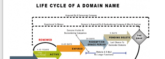 expired-domains-life-cycle